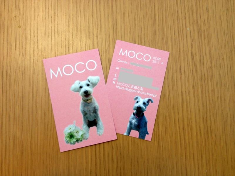 MOCOちゃんのペット名刺